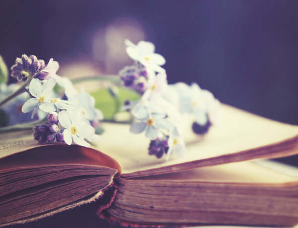 book_of_oblivion_ii_by_nairafee-d2y30fv
