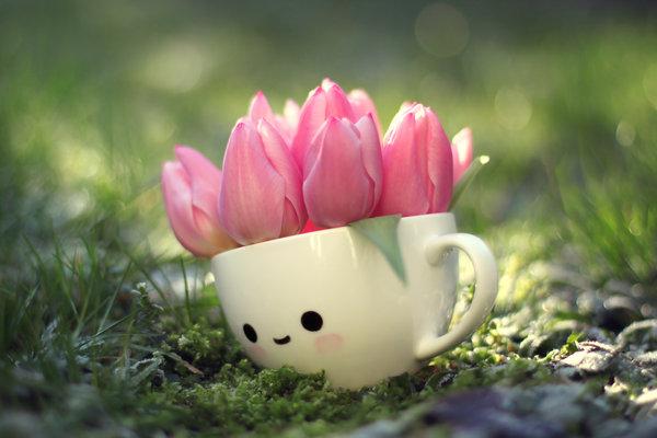 tulip_girl_by_lieveheersbeestje-d5s3onk